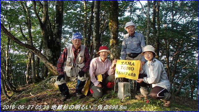 160626_27_jizosugi_tyorogatake_11