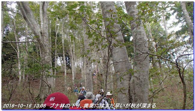 161016_kurogogoe_norikuradake_043