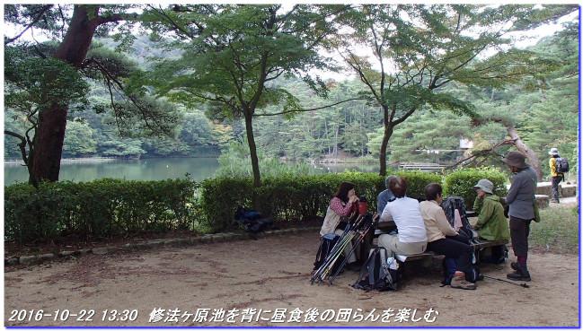 161022_shinrinsyokubutuen_binasub_2