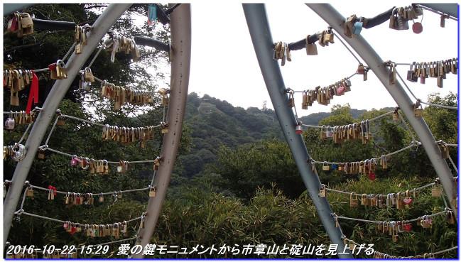 161022_shinrinsyokubutuen_binasub_4