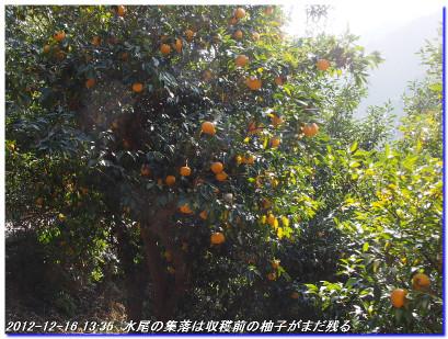 121216_jizosan_mizuo_029