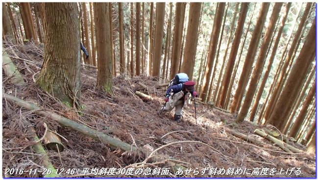 161126_toin_jizoyama_mizuo_07