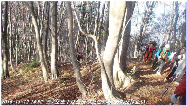 161112_13_nosakadake_mikuniyama_020