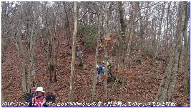 161123_takejidani_kumotoriyama_ko_3