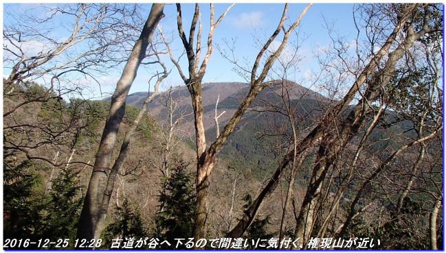 161225_hanaoretoge_nishioritateya_2