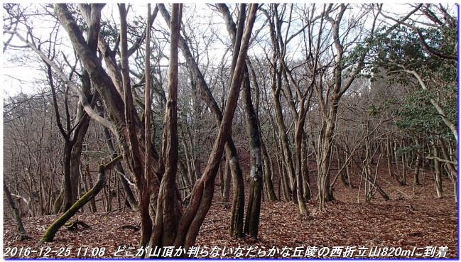 161225_hanaoretoge_nishioritateyama