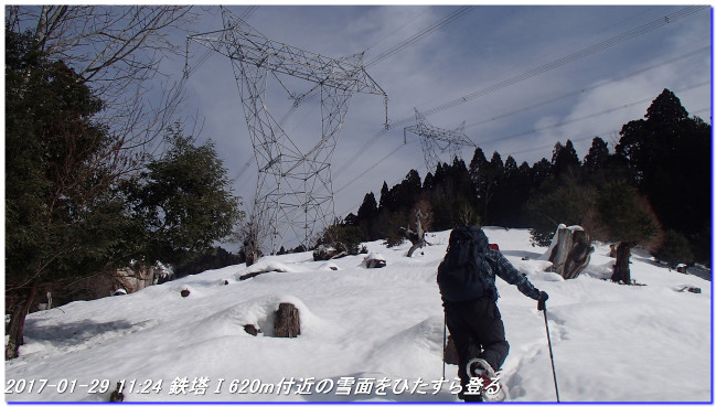 170129_taihisan_bujyoji_02