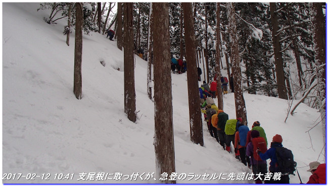 170212_taihisan_bujyoji_21