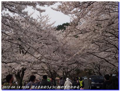 130414manjigoe_kaizduoosaki_070