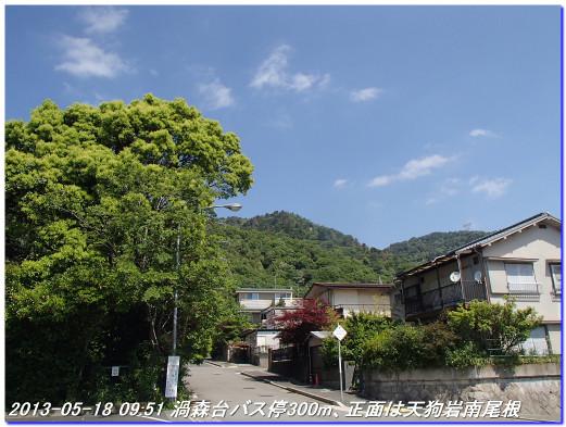 130518_uzumoridai_takahanemiti_01