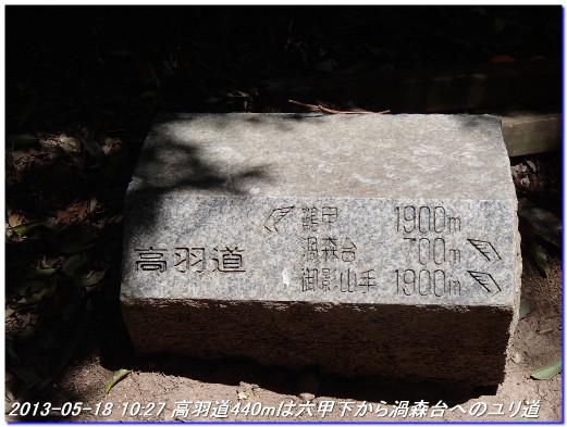 130518_uzumoridai_takahanemiti_03