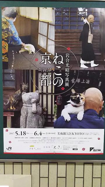 170521_aburakobushi_bozuyama_001