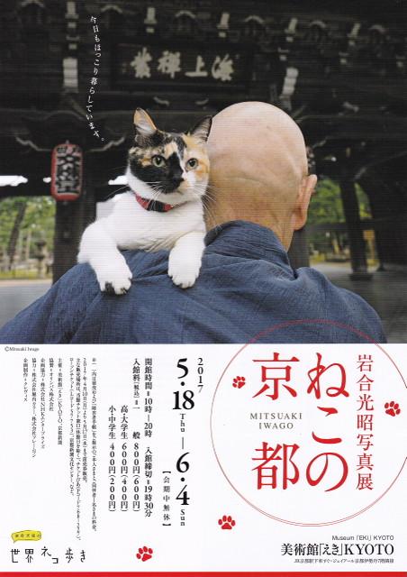 170530_iwagomituaki_neko_no_kyoto_0