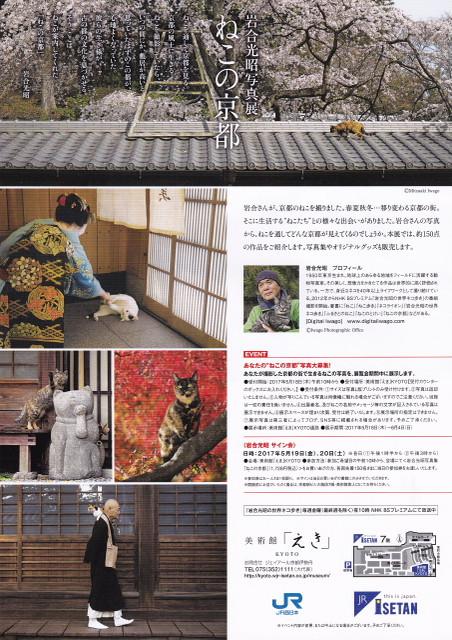 170530_iwagomituaki_neko_no_kyoto_2