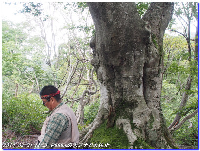 140830_31_misakatoge_kohokubunaga_3