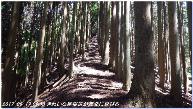 170617_minakoyama_minamione_higas_2