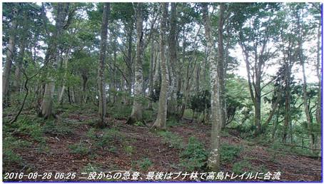 160827_28_notomatadani_sanjyodake_2