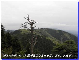 090505_syakunageone_014