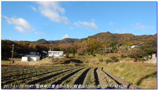 171119_gabenojyo_kitayamakoen_01