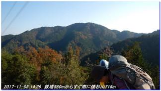 171105_hanasetoge_syakunageone_031