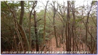 171202_kisurashiyama_nadareoyama_12