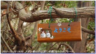 171223_kisurashiyama_nadareoyama_02