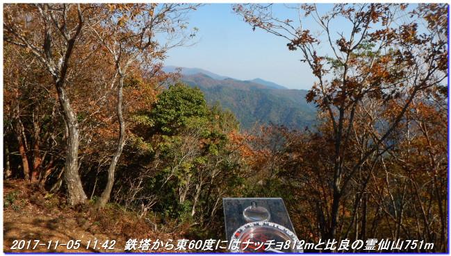 171105_hanasetoge_syakunageone_020