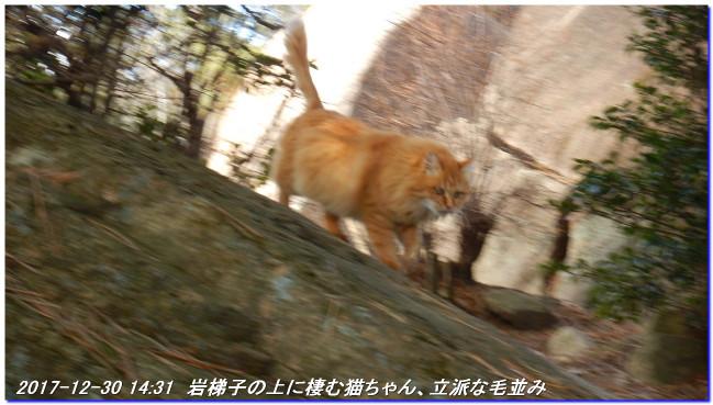 171230_ashiyajigokudani_castlewal_9