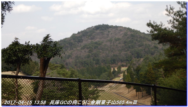 170415_tigogahakayama_kongodojiya_2
