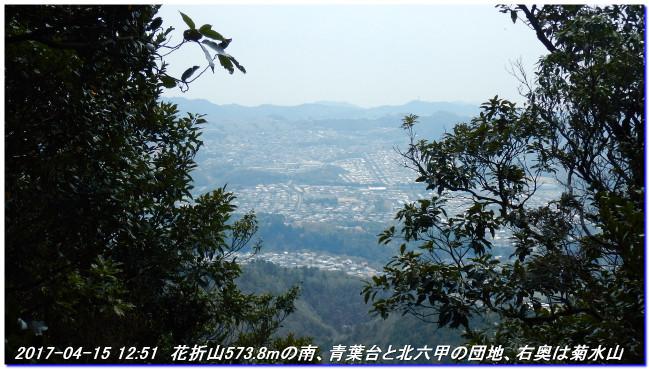 170415_tigogahakayama_kongodojiyama