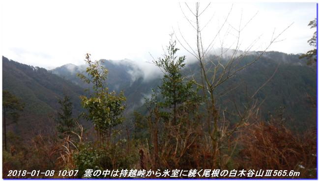180108_sugisakanishione_sawayama__2
