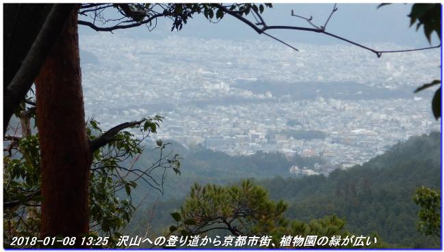 180108_sugisakanishione_sawayama__3