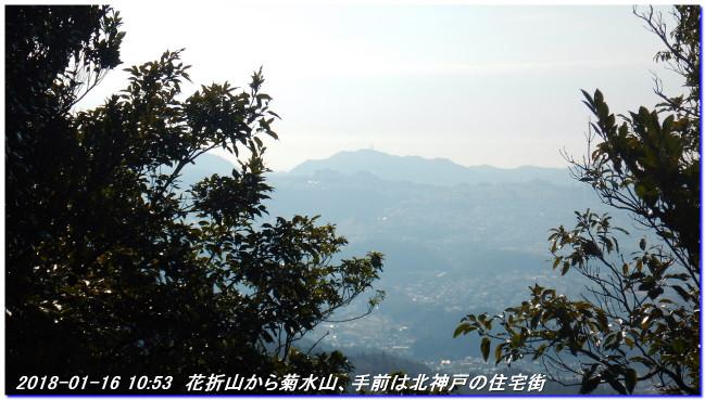 180116_hanaoreyama_kongodojiyama_02