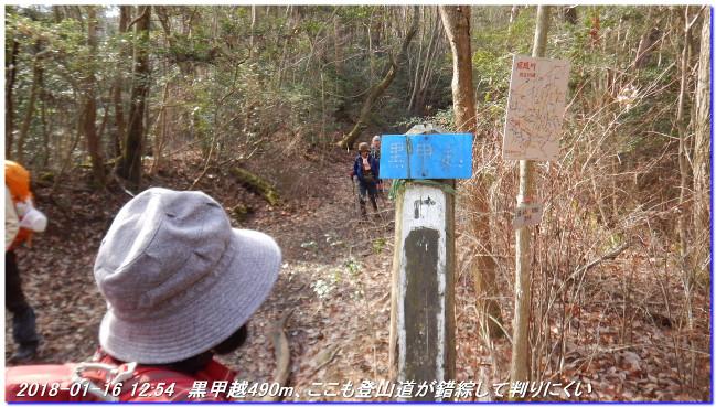 180116_hanaoreyama_kongodojiyama_03