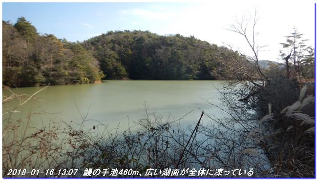 180116_hanaoreyama_kongodojiyama_04