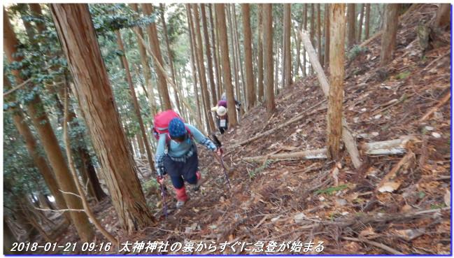 180121_haiya_kumotoriyamanishione_2