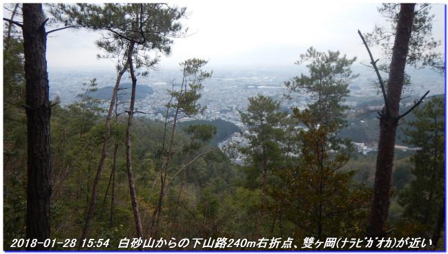 180128_sugisakanishione_sawayama__3