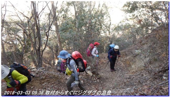 180303_myohoji_takatoriyama_kikus_2