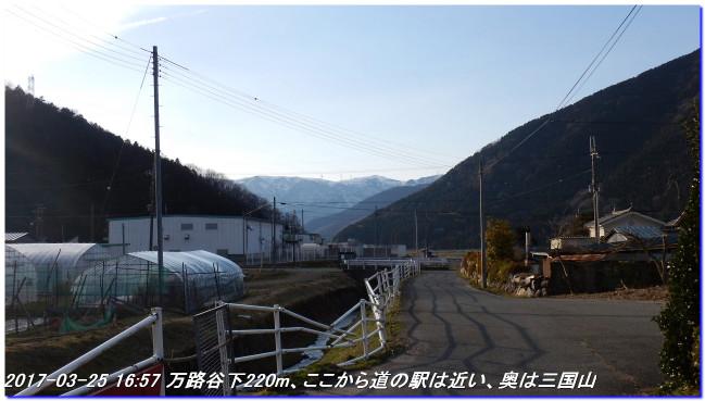 170325_kaiduoosaki_higashiyama_m_12
