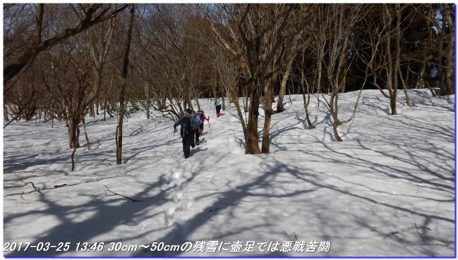 170325_kaiduoosaki_higashiyama_ma_8