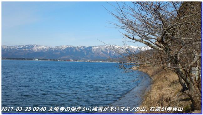 170325_kaiduoosaki_higashiyama_manj