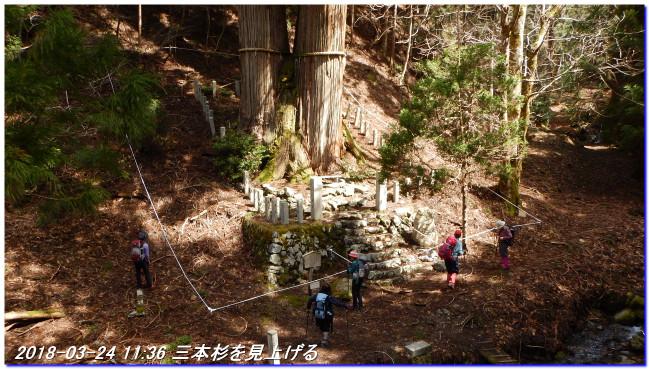 180324_sanbonsugi2plan_02_2