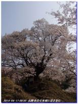 140417_buturyuji_saburogatake_023