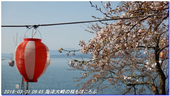 180331_kaiduoosaki_manjigoe_01