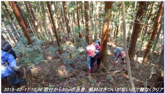180317_sanbonsugitanbo_008