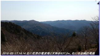 180317_sanbonsugitanbo_041