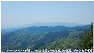 180429_hanasetoge_momoitoge_syaku_3