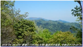 180429_hanasetoge_momoitoge_syaku_4
