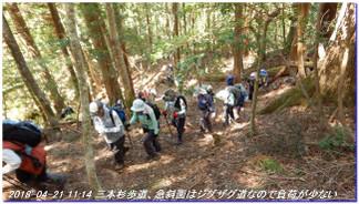 180421_hanase_sanbonsugi_tanbo_038