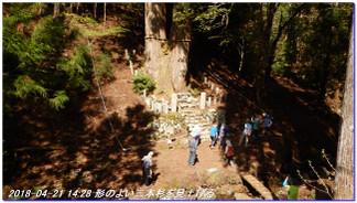180421_hanase_sanbonsugi_tanbo_058
